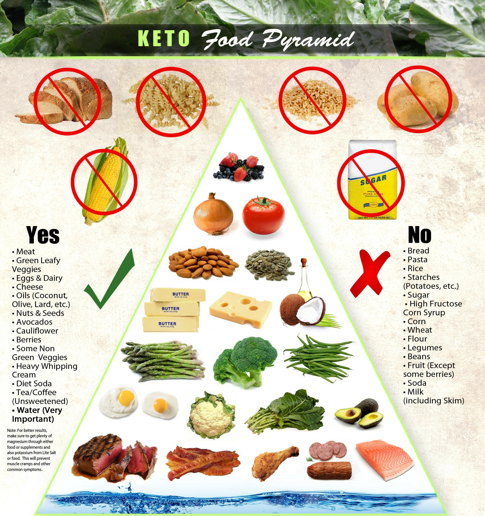 A ketogenic diet for beginners